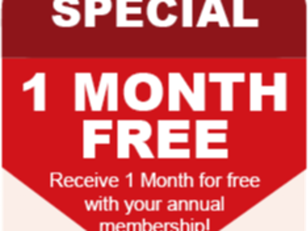 12 months - 1 month free