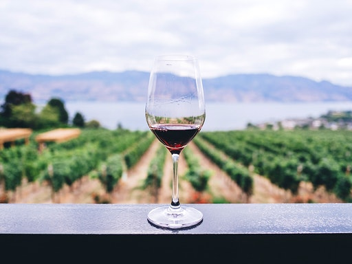 Australian Red Wines with Melbourne Wine Courses