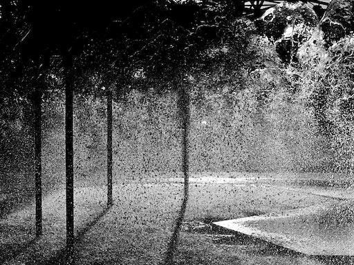 """""""Black Rain"""" by Sharon Hickey"""