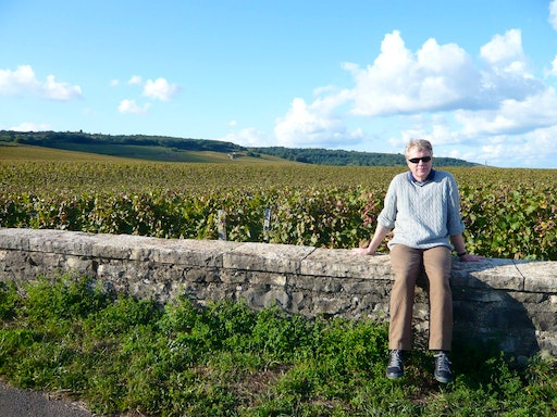 At Romanee Conti, in the Côte de Nuits subregion of Burgundy, France, with Pinot noir as the primary grape variety (September 2011)
