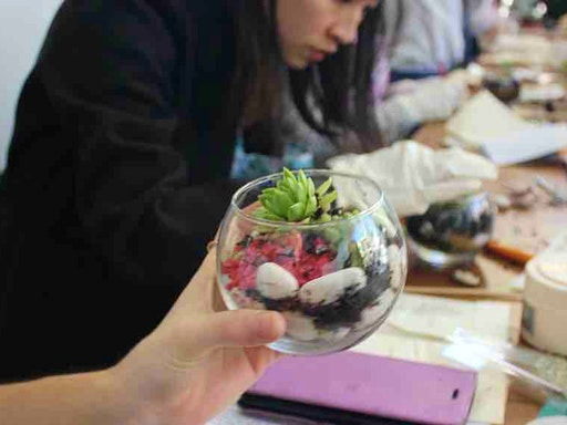 Make a Mini Terrarium Workshop with Classbunny